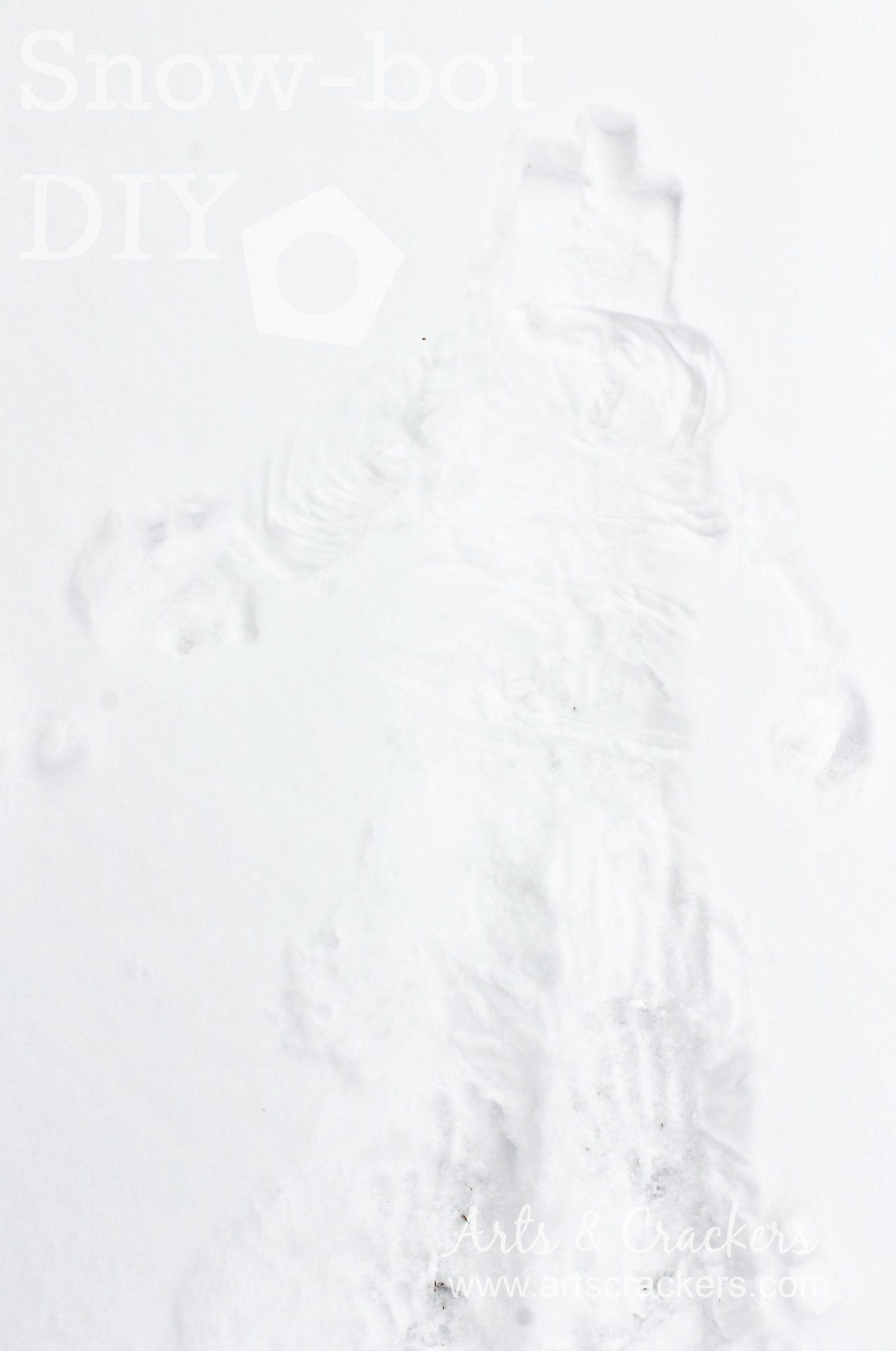 snowbot diy