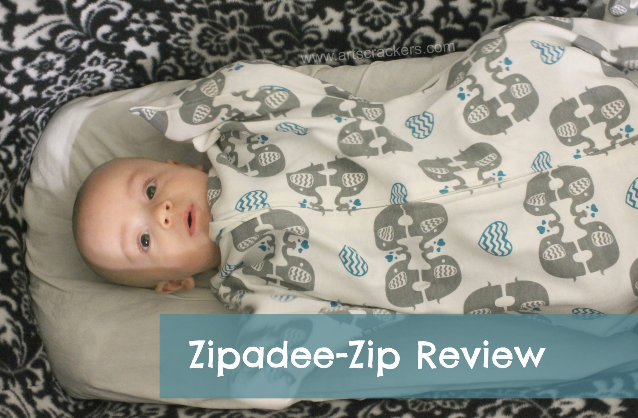 Zipadee Zip Review