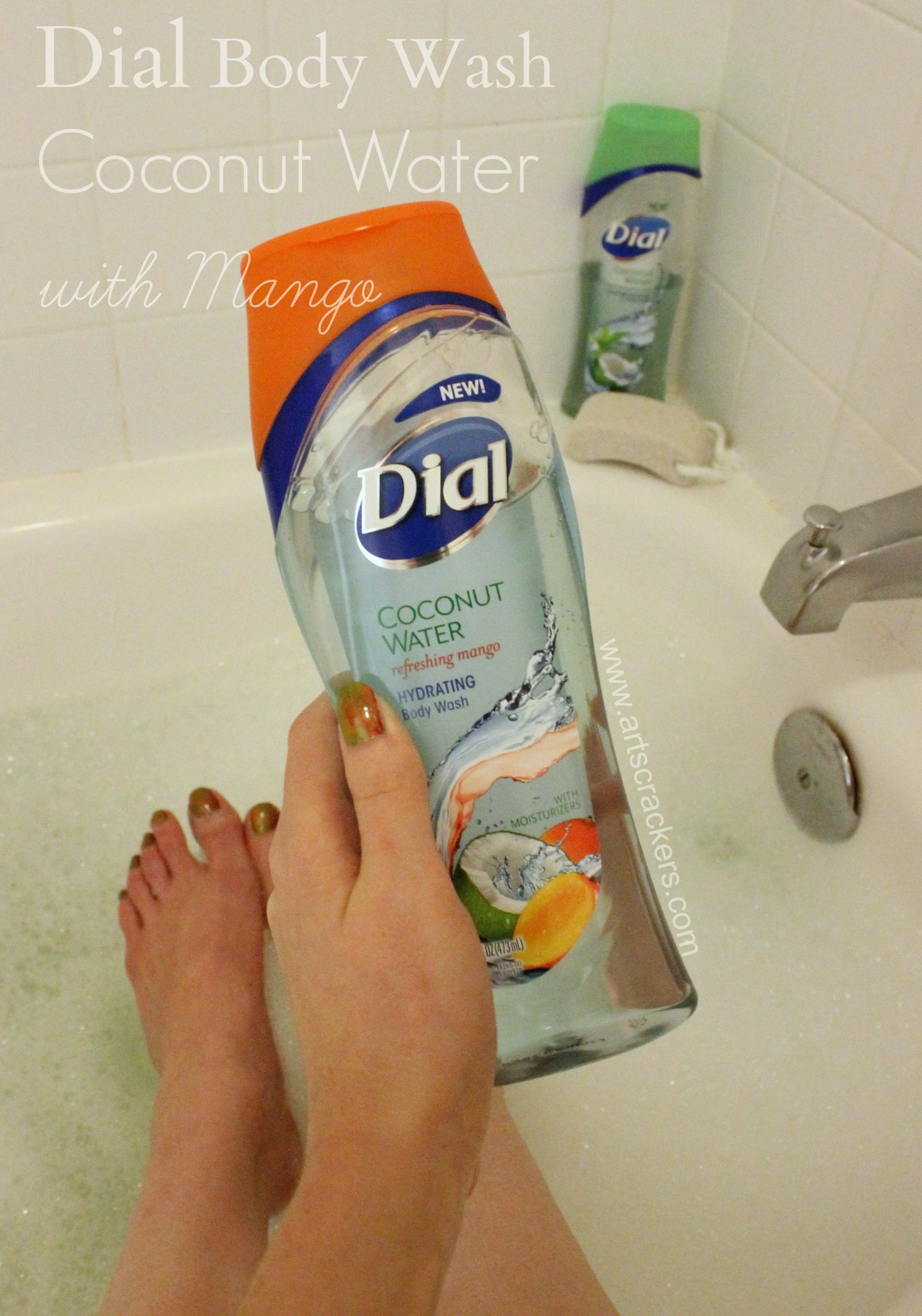 Dial Body Wash Coconut Water with Mango