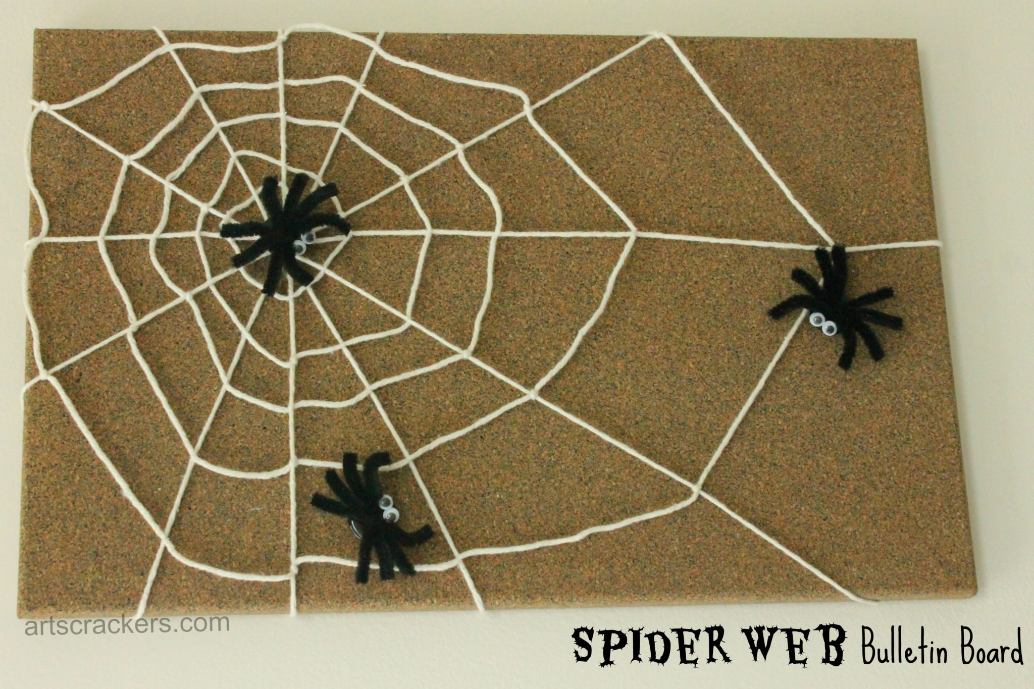 Spiders and Web Bulletin Cork Board
