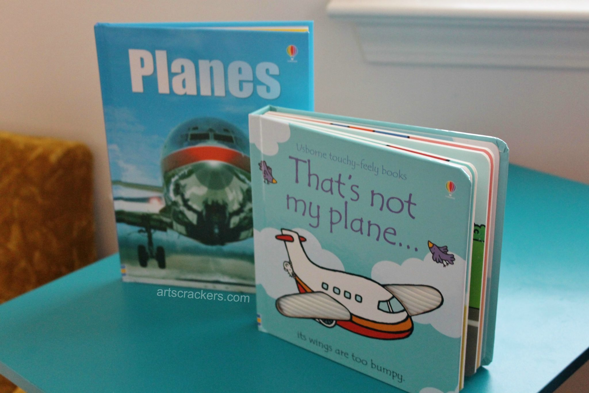 First in Flight Book a Party