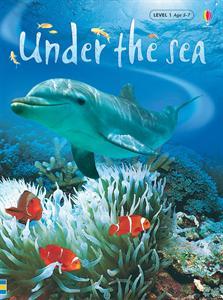 Usborne Books Early Reader Non-Fiction Under the Sea