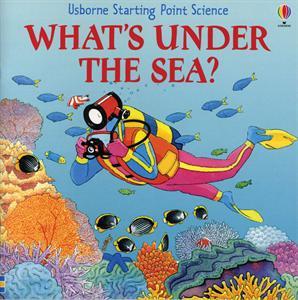 Usborne Books What's Under the Sea
