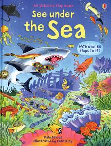Usborne Books See Under the Sea