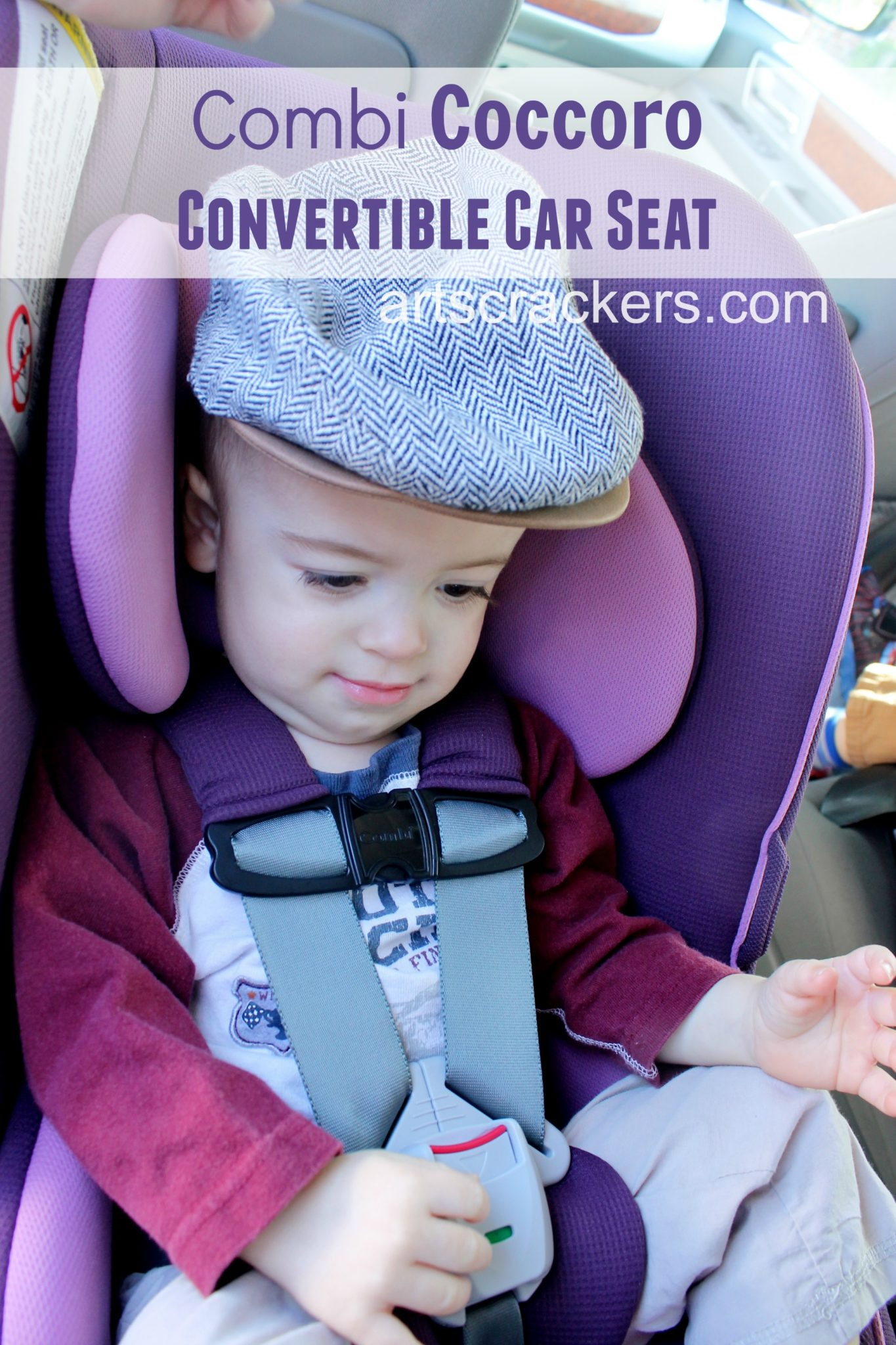 Combi Coccoro Convertible Car Seat in Grape. Click the picture to read the review.