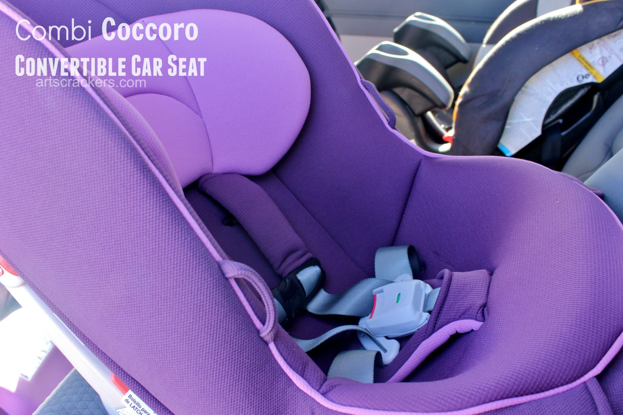 Combi Coccoro Convertible Seat. Click the picture to view the review.