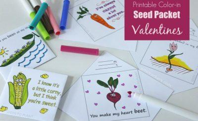 Printable-Color-In-Seed-Packet-Valentines