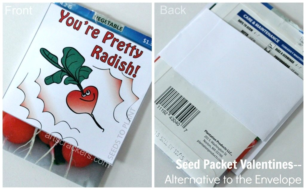 Seed-Packet-Valentines-Alternative-to-Envelope