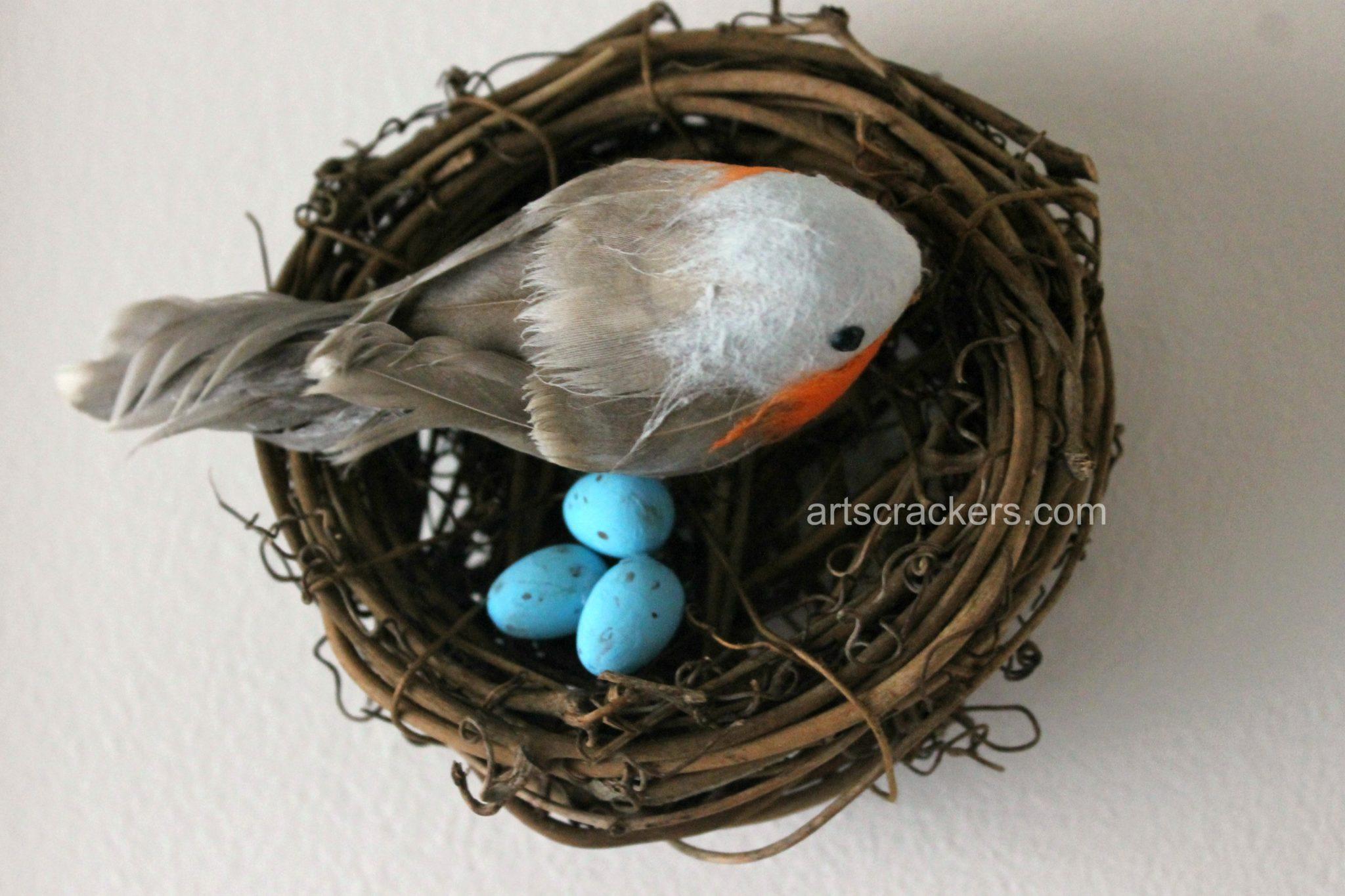 Spring Wall Robin Nest