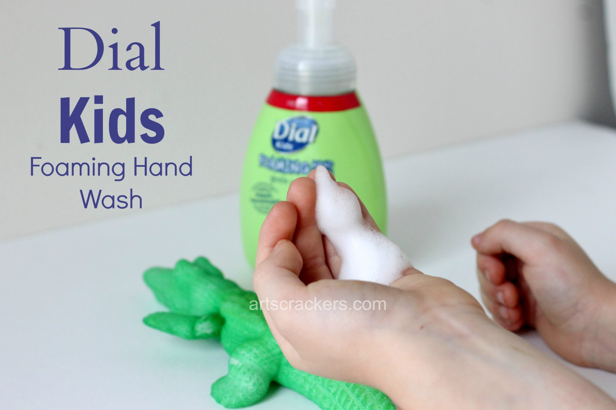 Dial Kids Foaming Hand Wash. Click the picture for the review and giveaway.