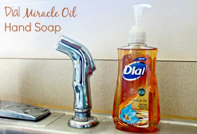 Dial Miracle Oil Hand Soap. Click the picture to read the review.