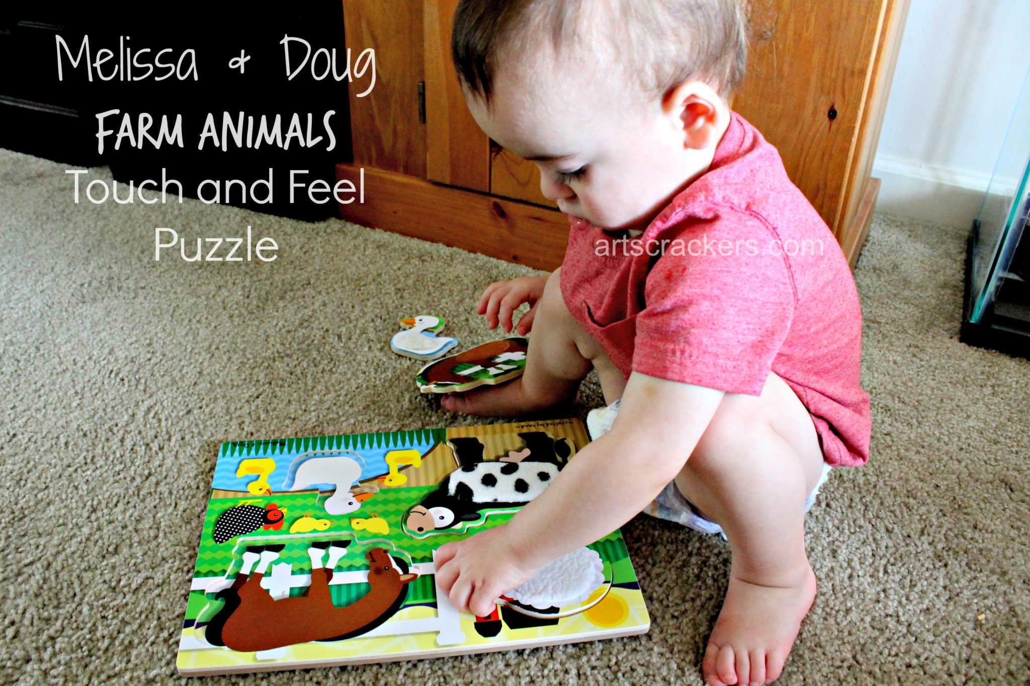 Melissa and Doug Farm Animals Touch and Feel Puzzle. Click the picture to read the review.