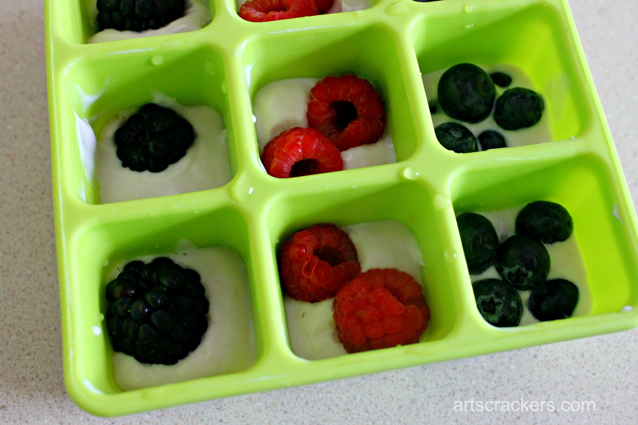Nuby Garden Fresh Freezer Tray Smoothie Cubes Step 1