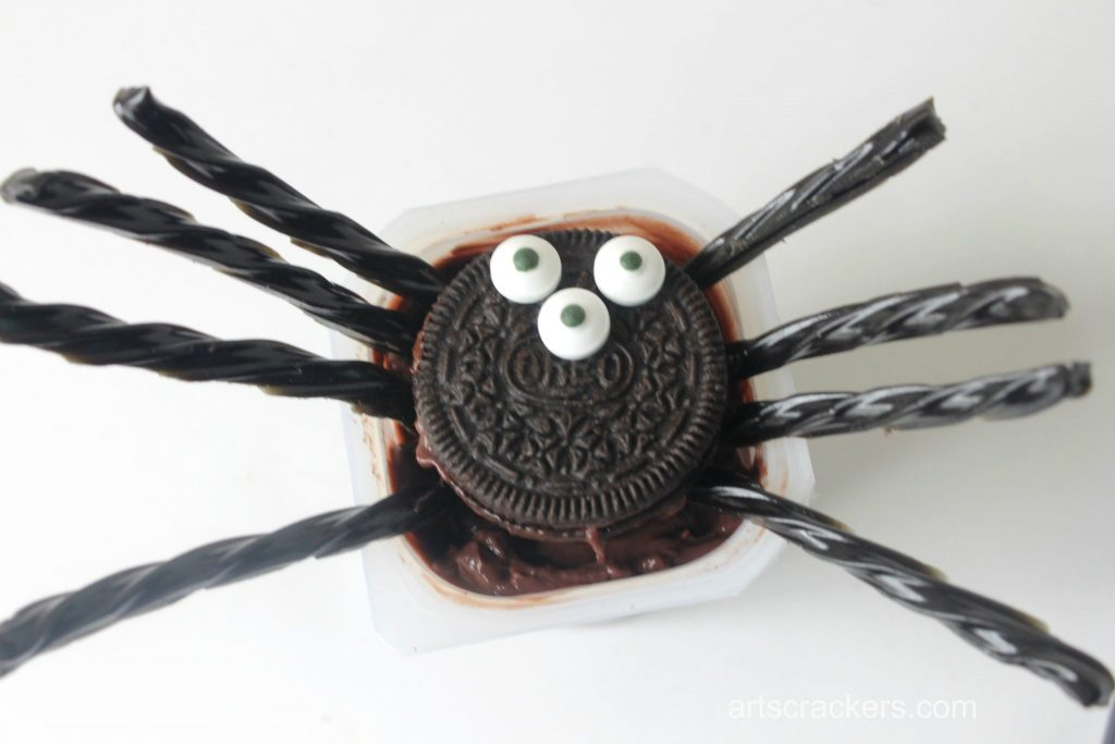 Pudding Cup Spider