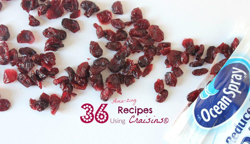 Recipes Using Craisins Header