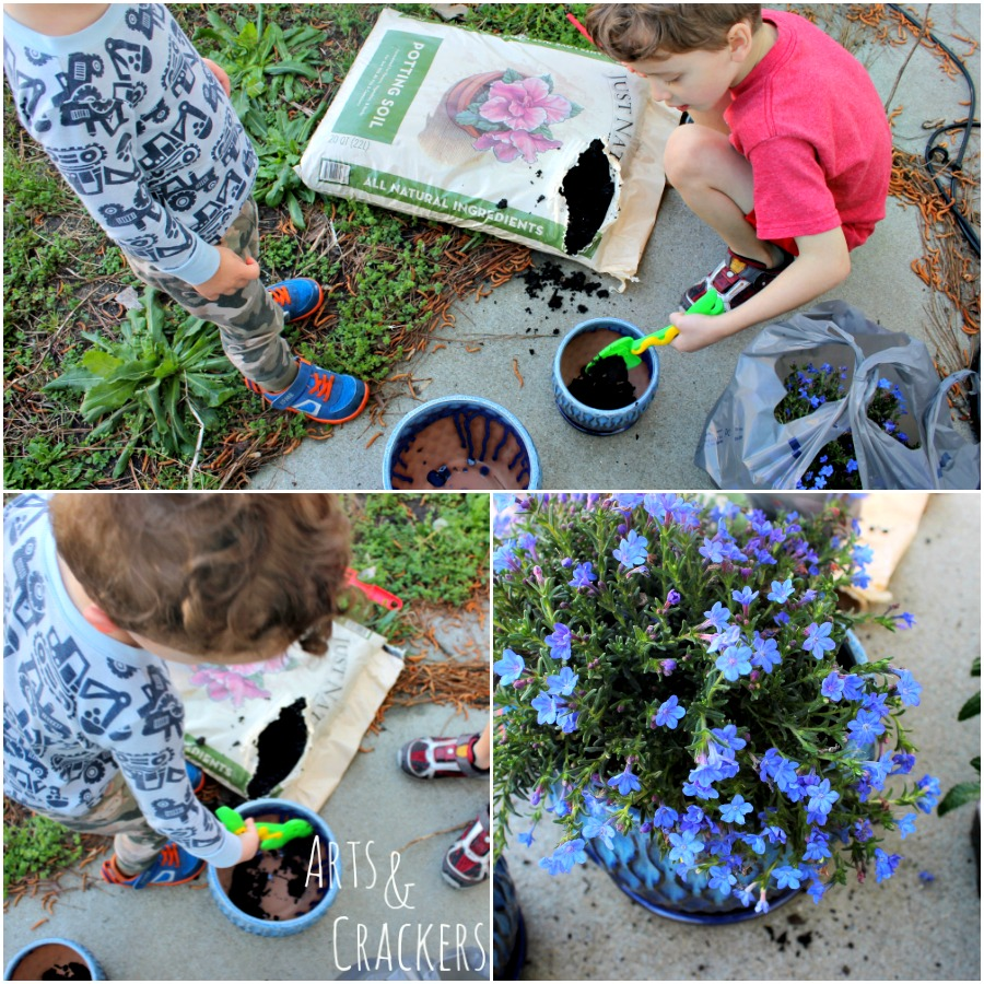 Transform Your Patio in a Day Planting Flowers