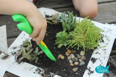 Fairy Garden Tutorial Step 5