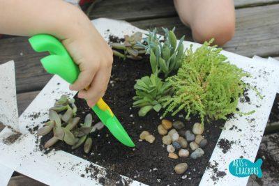 Fairy Garden Tutorial Step 5