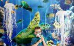 DIY Hanging Jellyfish Decoration   Ocean-Themed Party Decor