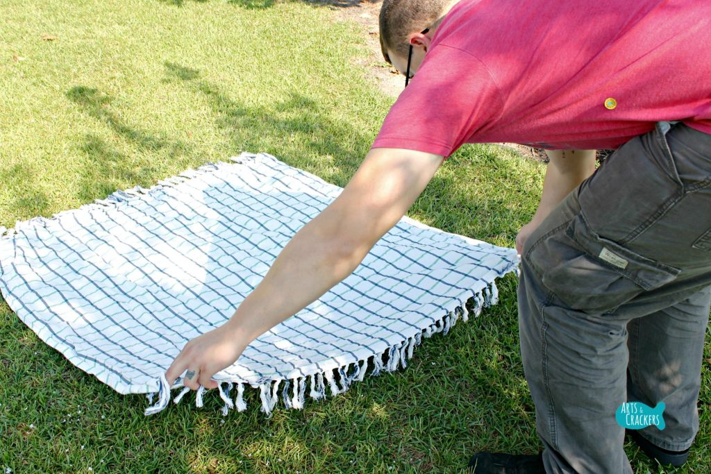 Planning a Picnic Blanket