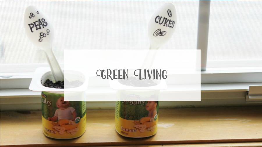Arts & Crackers Green Living Category