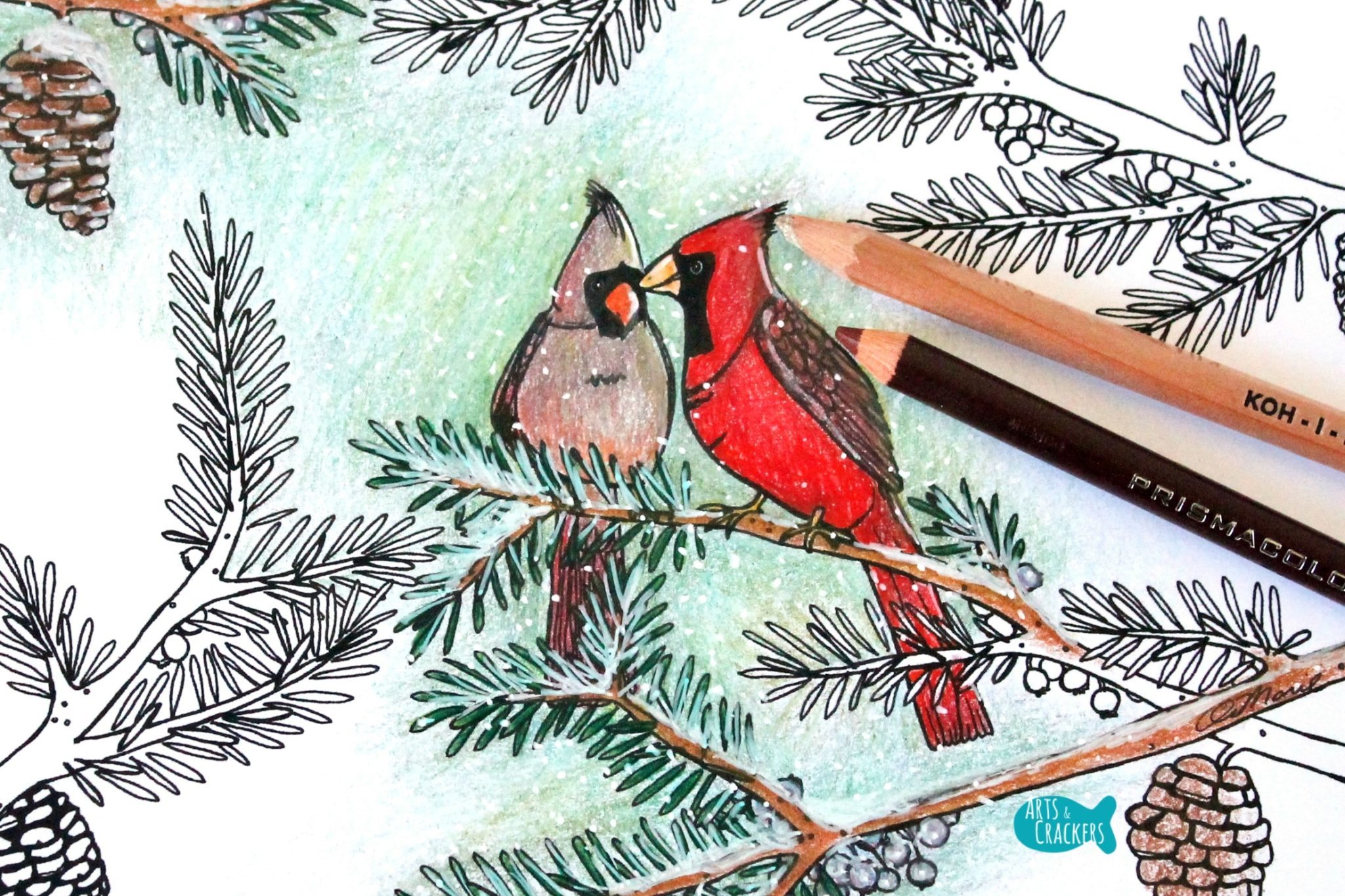 Two Birds of a Feather Christmas Coloring Page for Adults Close