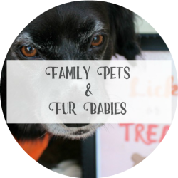 Landing Page - Family Pets and Fur Babies-Medium