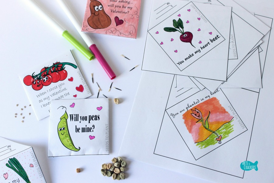 Seed Packet Valentines Cover