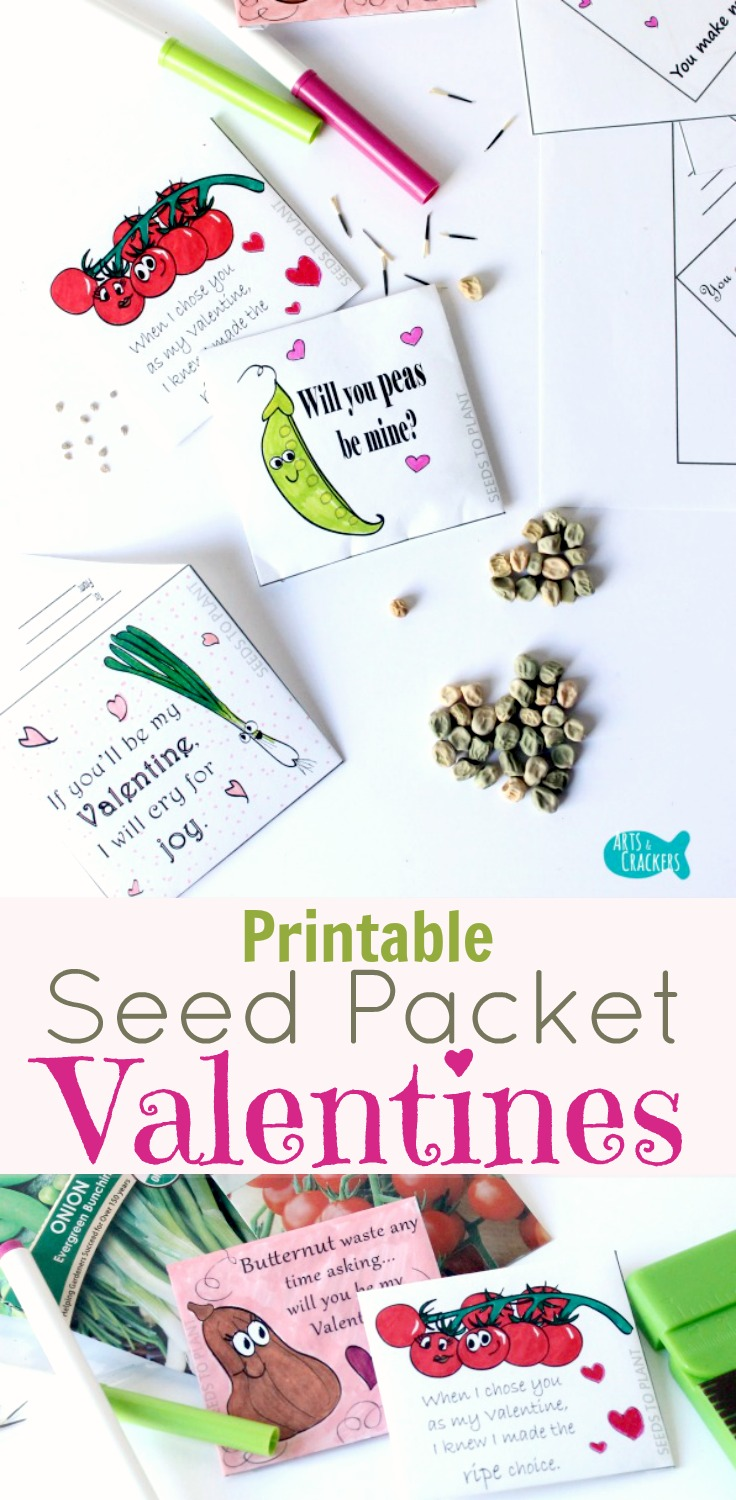 An educational non-candy Valentine's Day ideas, these Seed Packet Valentines are always a huge hit. Print free coloring pages or purchase the full set | Valentine's Day | Valentines | Non-Candy Valentines | Valentine's Day for Kids | Seed Packets | Gardening | Gardening for Kids | Coloring Pages for Kids | Vegetable Seeds | Print and Fold Envelopes | Seed Envelopes | Valentine's Envelopes | Cheesy Sayings | Vegetable Valentines | Green Valentines | Printable