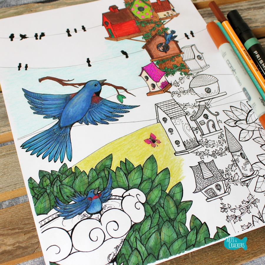 Birds Coloring Page Home Tweet Home Angled Square