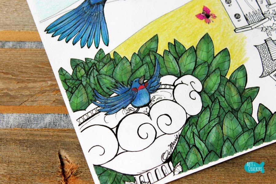 Birds Coloring Page Home Tweet Home Bird Bath