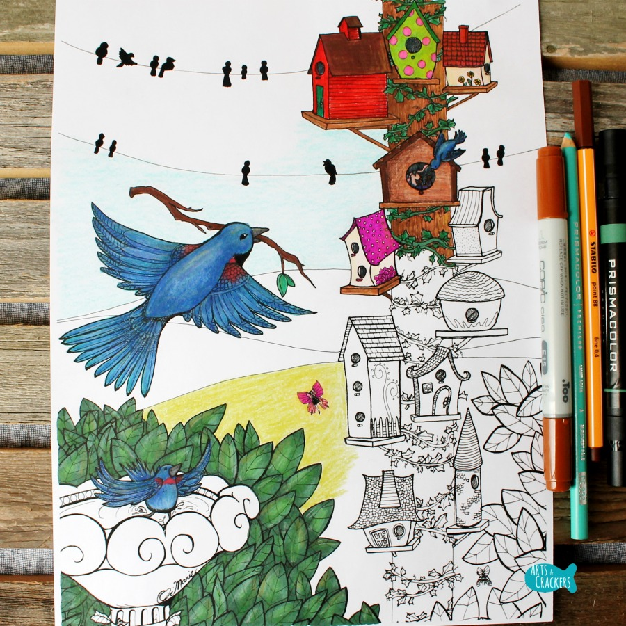 Birds Coloring Page Home Tweet Home Full Square