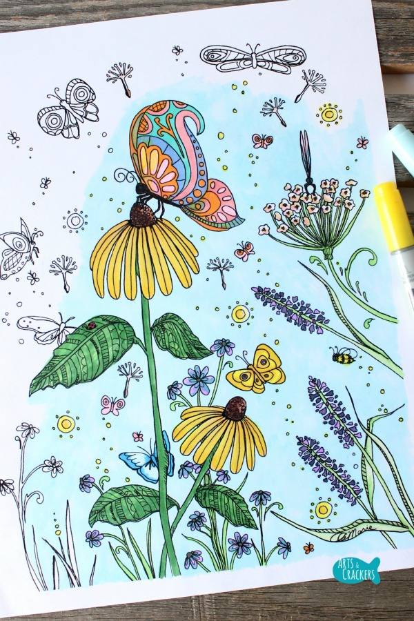 Butterfly Garden Butterfly Coloring Page for Adults Long