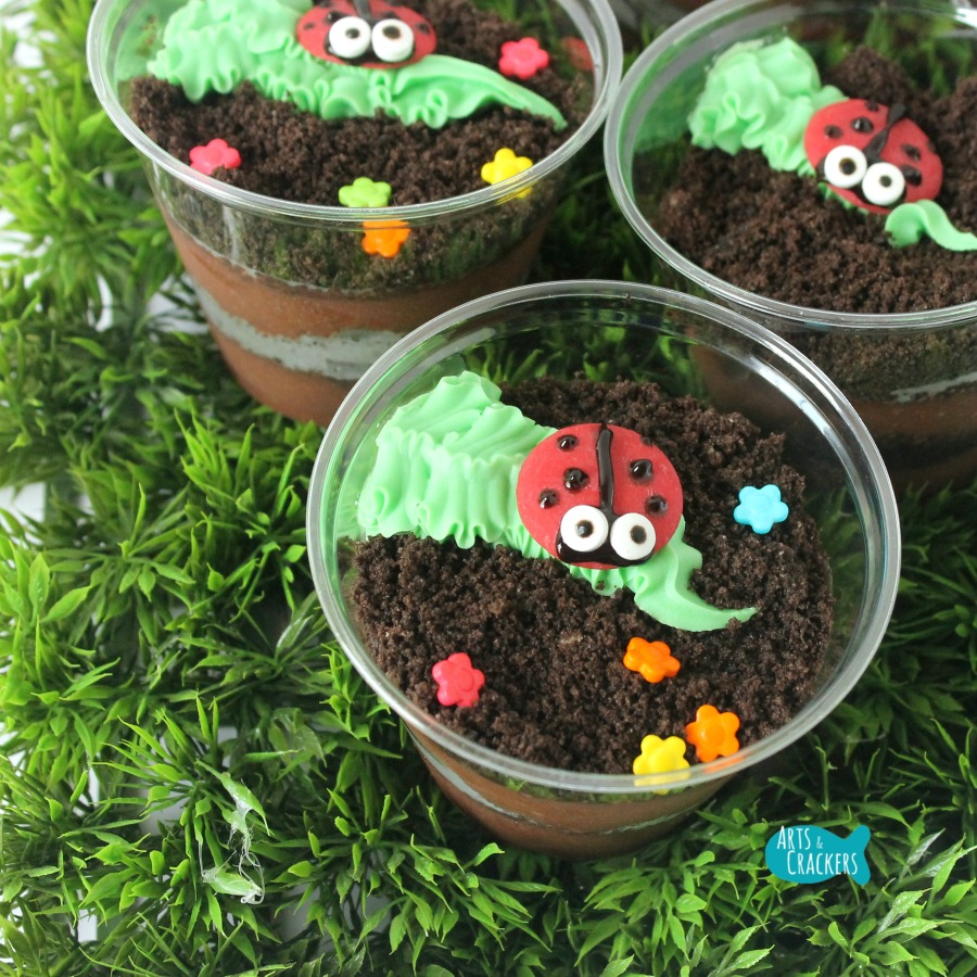 Ladybug Pudding Cup Close Square