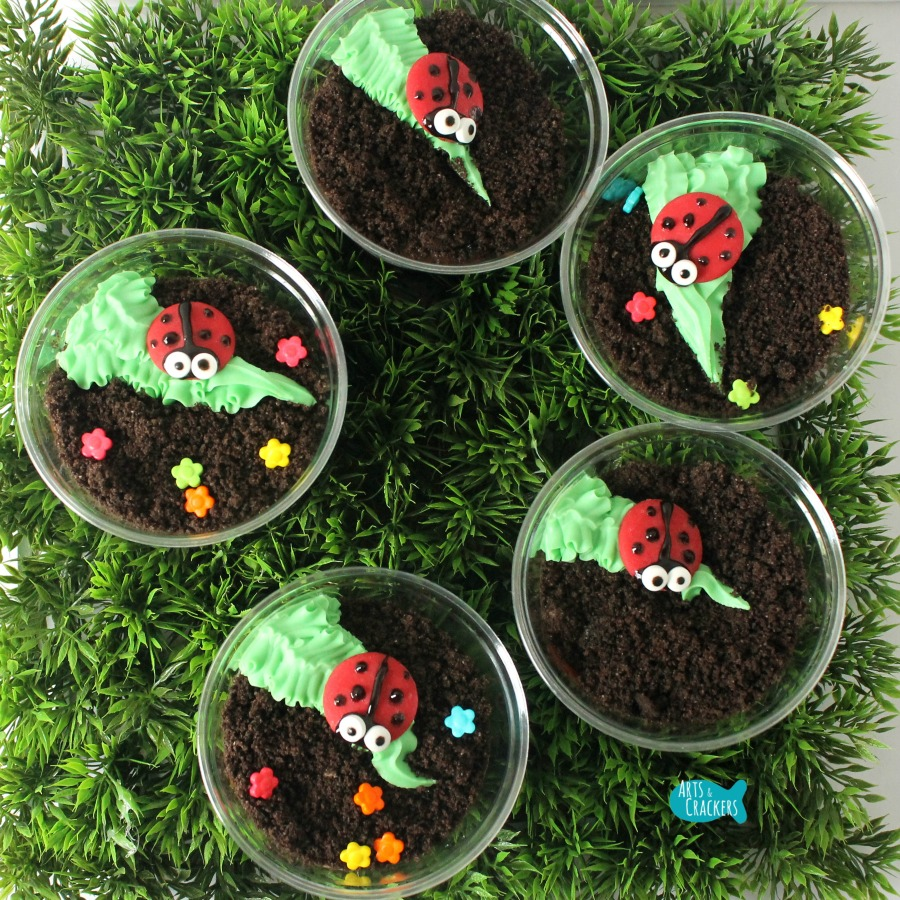 Ladybug Dirt Cup Square Many